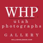 Willie Holdman Photographs Inc.